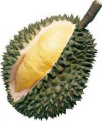Durian aus Thailand, wird häufig auch Stink- oder Käsefrucht genannt.